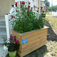 Downspout Planter