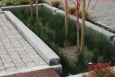 Stormwater Planter Philly Watersheds