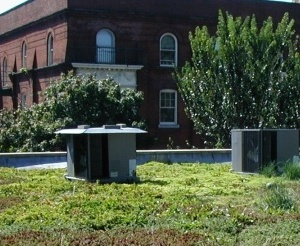 Green roofs philadelphia water department for Green roof cost per square foot