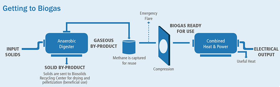 Biogas Cogeneration Diagram