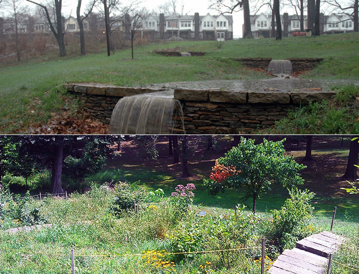 The terraced rain gardens of Cliveden Park in fall (top) and spring. The structures provide beautiful landscaping while managing stormwater from nearby streets and protecting local streams. Credit: Philadelphia Water