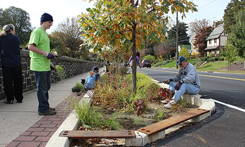 Soak It Up! Adoption volunteers take care of street trees in an East Falls bumpout. Stormwater street trees, tree trenches, and rain gardens are just some of our green tools that commonly incorporate trees. Photo credit: Philadelphia Water.