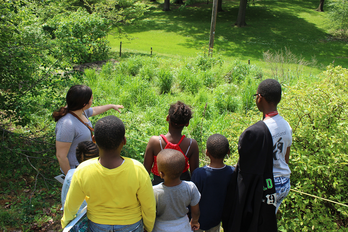 A member of the Philadelphia Water Public Engagement Team teaches Philadelphia Youth about Green Stormwater Infrastructure in Germantown/Mt. Airy. Credit: Philadelphia Water.