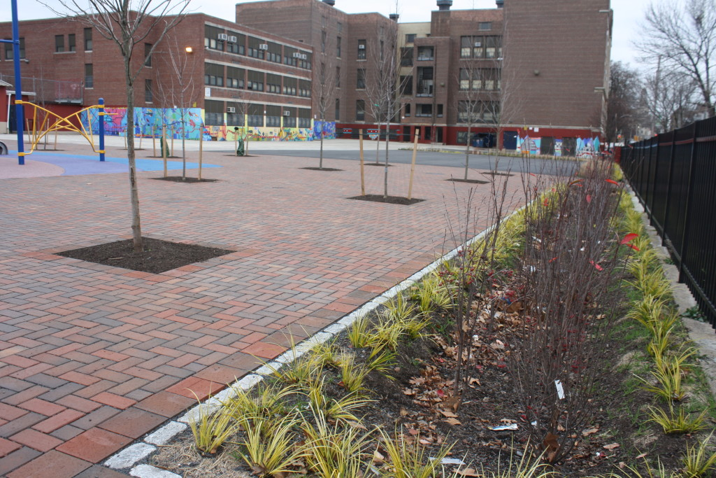 Trees, permeable pavement and a rain garden all make the Lea schoolyard a better place for kids and Philadelphia's waterways. Credit: West Philadelphia Coalition for Neighborhood Schools