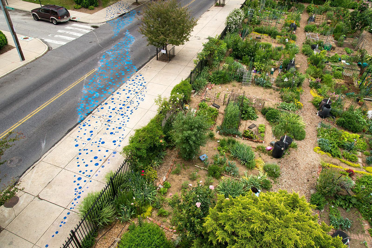 Proposed changes to the current stormwater rates would provide discounts to community gardens that qualify under changes proposed by the City.