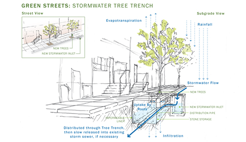 This illustration shows how stormwater tree trenches, an important tool in the Green City, Clean Waters plan, work. Plans are under way to install these tools in the neighborhood around Fotterall Square and Vandergrift/Danny Boyle Park. Credit: Philadelphia Water.