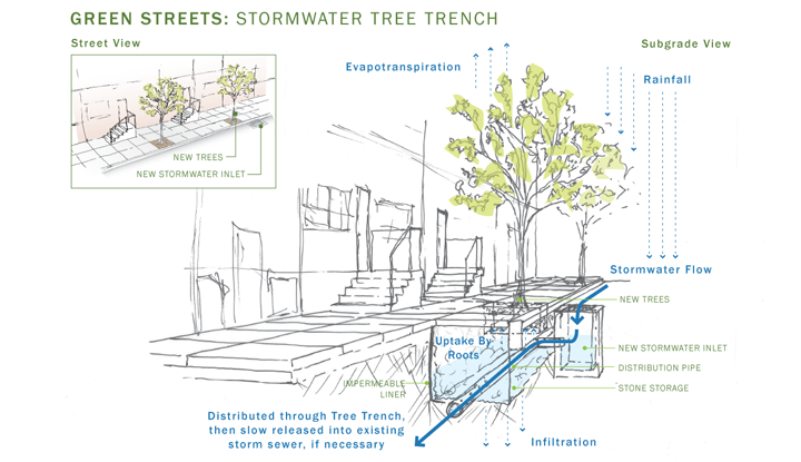 "This diagram shows how trees move water from the soil to the air, creating what one NPR source describes as ""massive, invisible flying rivers."" Image Credit: Philadelphia Water"