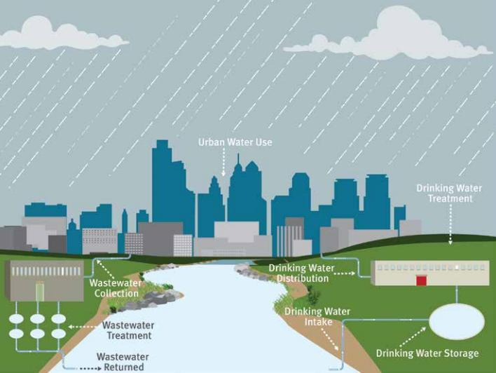 how does human activity in watersheds What we do to this system affects everything within it for example, what happens if rain that falls from the sky or the water that flows through our streams is contaminated these contaminants may infect plant or animal life including human beings, or reduce their ability to grow and reproduce.