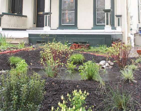 A rain garden installed by Rain Check contractors. We're looking for qualified contractors to install these stormwater tools. Credit: Philadelphia Water